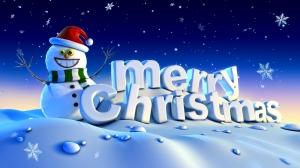 Happy Holidays - Merry Christmas